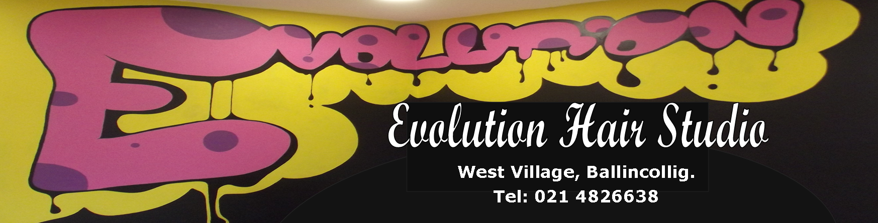 Evolution Hair Studio